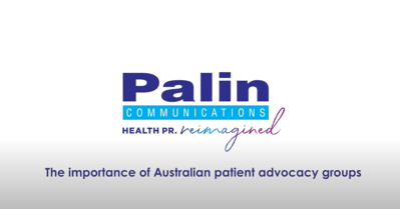 Palin video blog